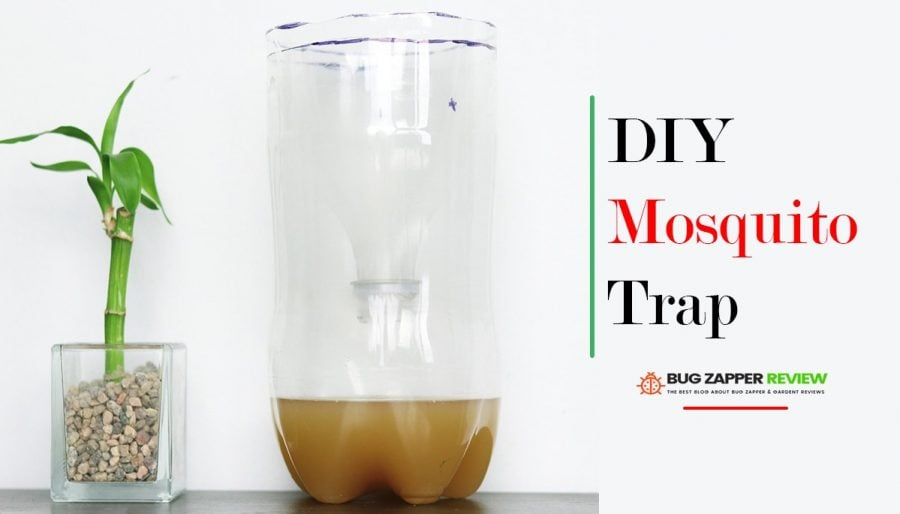 DIY Mosquito Trap That Excellent Work