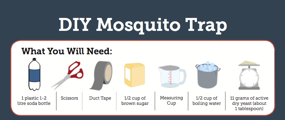 Diy Mosquito Traps Construction Equipments