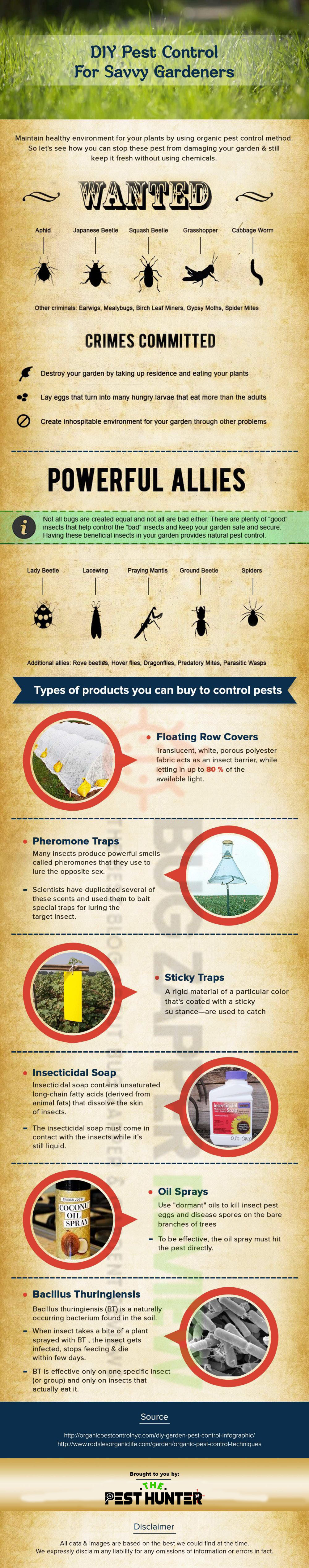 Homemade-Mosquito-Repellent-infographic