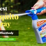 Best Mosquito Spray Reviews