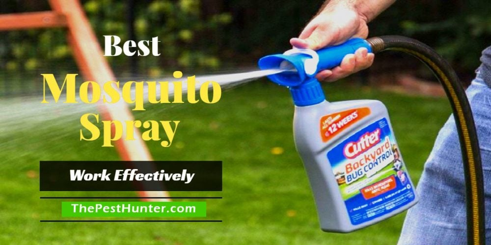 Best Mosquito Spray For 2019