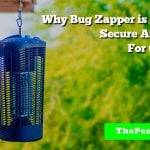 Why Bug Zapper is Convenient, Secure And Effective For Outdoor Use