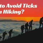 How to Avoid Ticks When Hiking