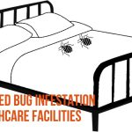 Rise in Bed Bug Infestation in Healthcare Facilities